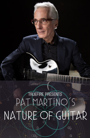 Pat Martino's The Nature of Guitar ジャケット画像